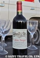 チャドの砂漠で乾杯 (2)