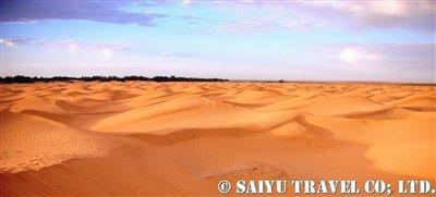 赤い砂漠クサールギレン