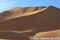 砂丘登りにチャレンジ