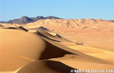 テネレ砂漠arakao (5)