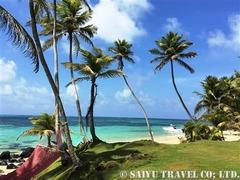 リゾートの眼の前に広がるエメラルドグリーンのカリブ海