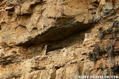 カラヒアの石棺 (2)