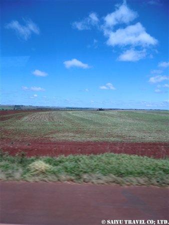 パラグアイ 赤土の大地
