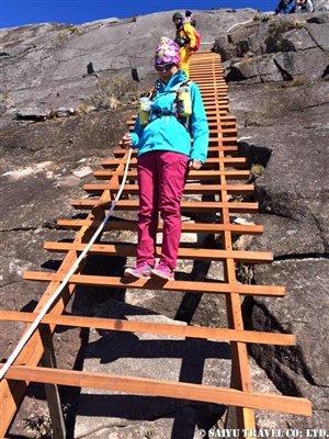 【レナウ登頂ルートの木製階段】