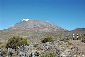 キリマンジャロ登頂'06 155