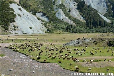 キルギス カルカラ谷 西遊旅行 (1)