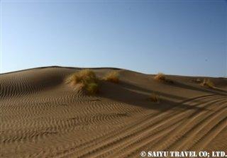 トルクメニスタン カラクム砂漠 (2)