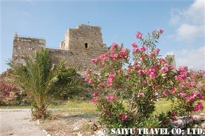 十字軍の城塞跡