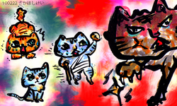 0222_catday2