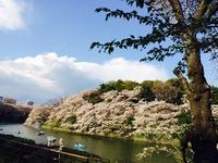 2014-04-04-15-50-50