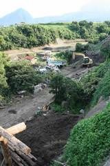 にんじんの為の堆肥場