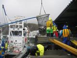 知床で漁3
