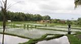 マサコソープ工房前の風景