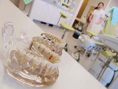 休日歯科診療・担当日