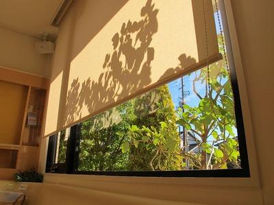 待合室・冬の陽射し2