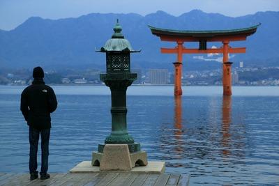 早朝の厳島神社7