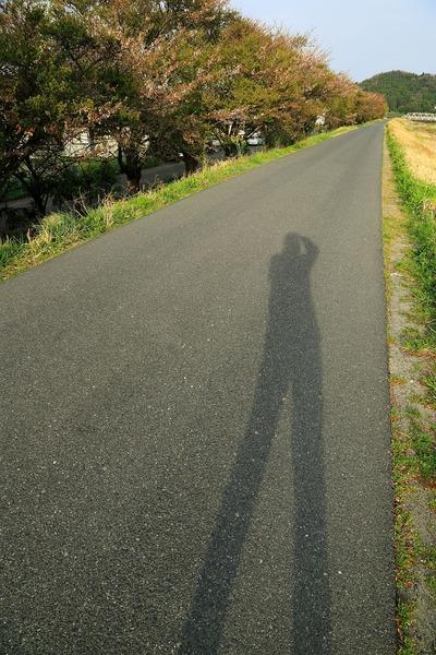 夕刻の夏井川2