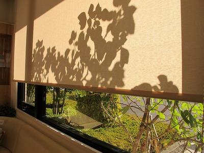 待合室・冬の陽射し1