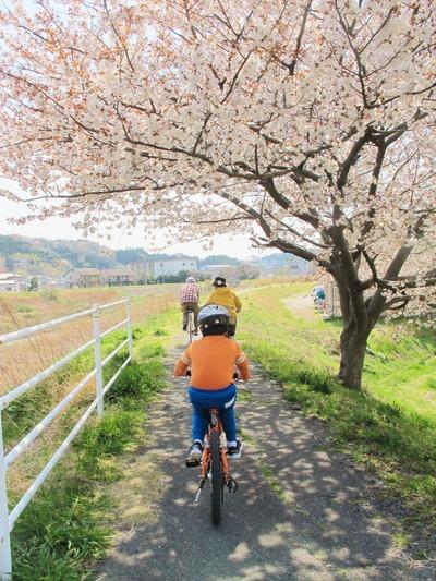絶好のサイクリング日和!3