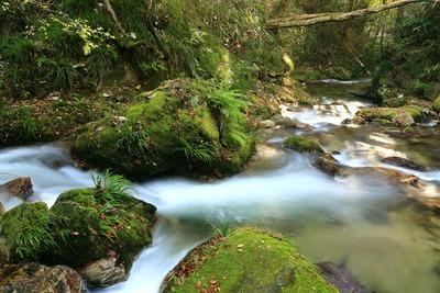 袋田の滝に向かう途中の下滝4