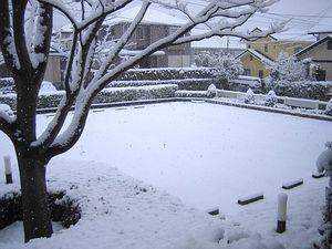 どうしちゃったんでしょう、この雪・・・2