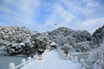 白水阿弥陀堂の雪景色1