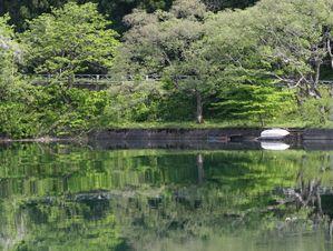 沼沢湖の湖畔