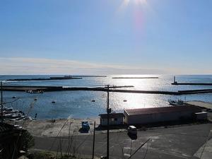 漁港の朝1