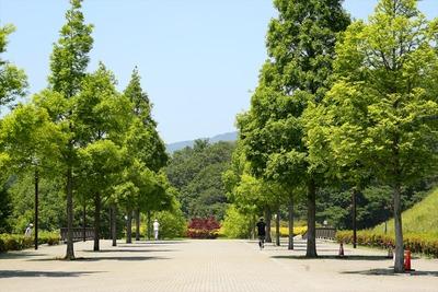 21世紀の森公園1