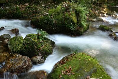 袋田の滝に向かう途中の下滝2