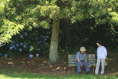 三崎公園に人々が憩う⑥