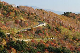 この道路は、「磐梯スカイライン」です。