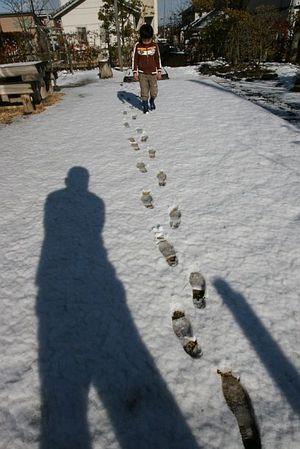 雪面への足跡
