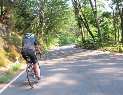 夏井川下りのサイクリング4