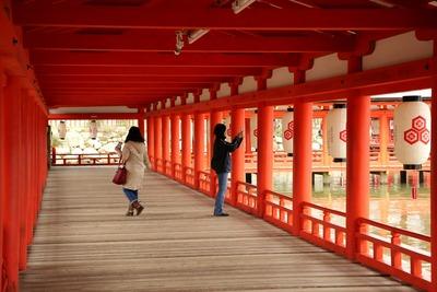 早朝の厳島神社8