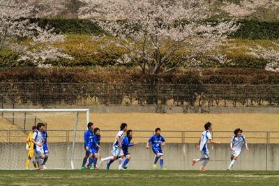 桜とバンディッツブルー3