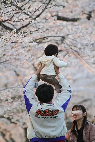 昨年撮った「夏井千本桜」での写真