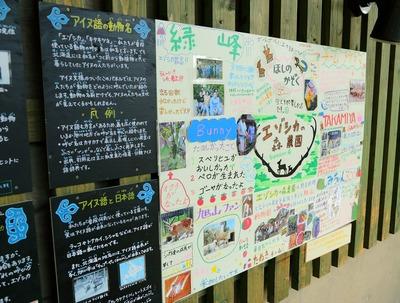 感心した旭山動物園6