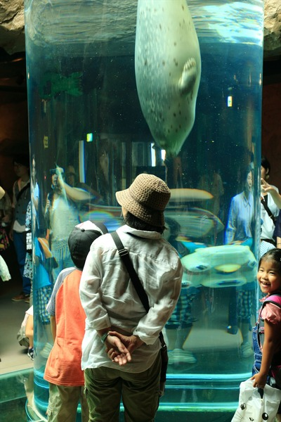 感心した旭山動物園7