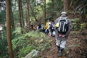 戸渡・森の散策8