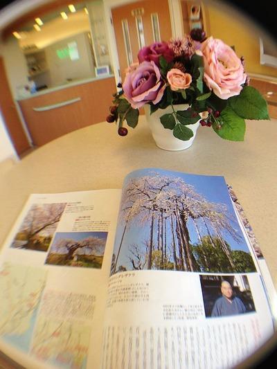 待合室の雑誌2