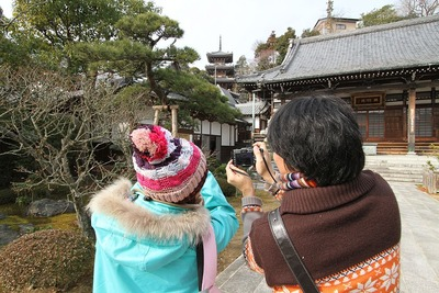 成田山勝行院の散策2