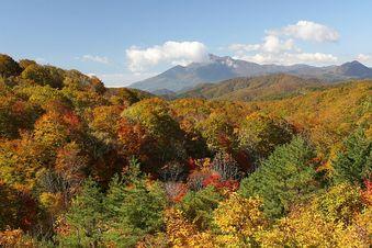 「あぁ、会津磐梯山は宝の山♪」でしたっけ