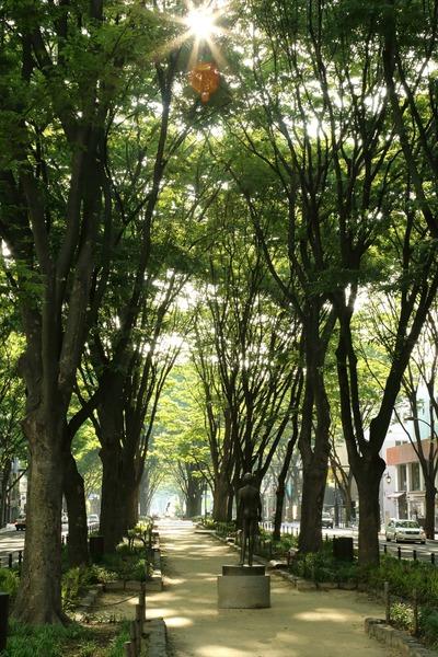 定禅寺通りの朝