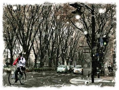 4月21日・・・雪模様2