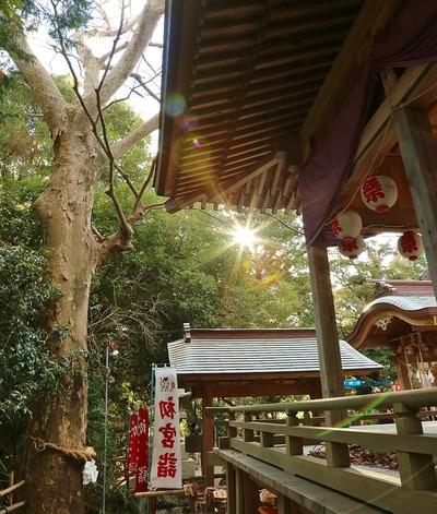佐麻久嶺神社の初詣4