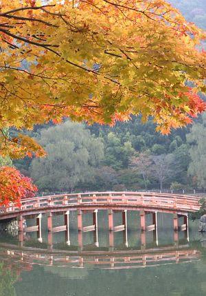 橋は、子供の頃にもあったはずナンだけど記憶が・・・(-.-)