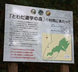 戸渡・森の散策9