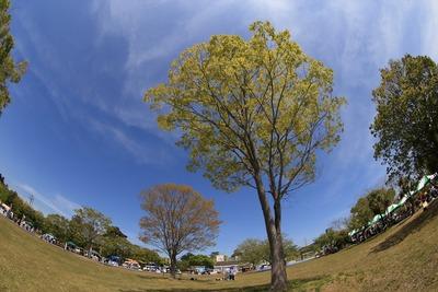 広野町のパークフェス