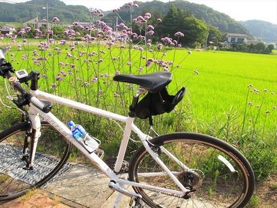 サイクリングのメリット1